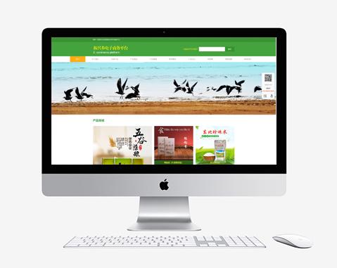 振兴乡电子商务平台